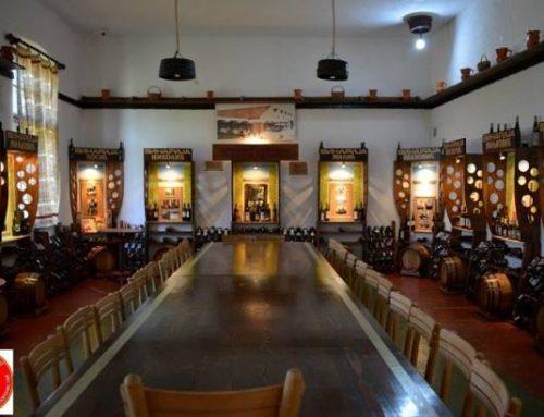Muzej vinarstva i vinogradarstva