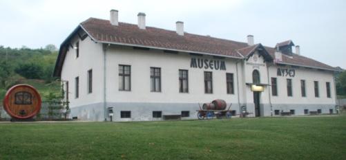 muzej_vina