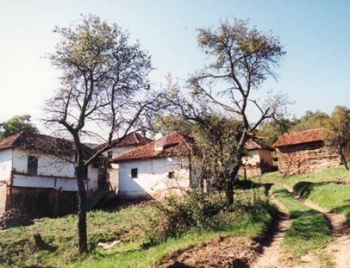 Župske poljane