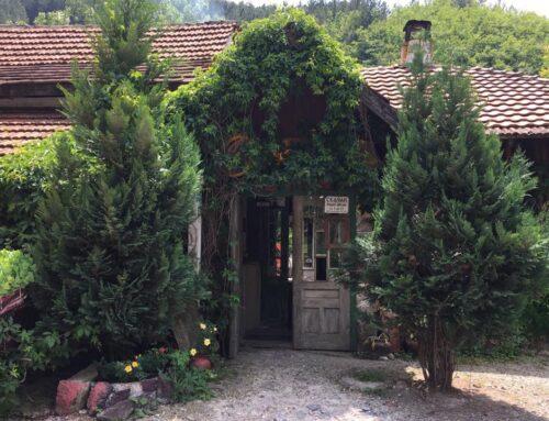 Etno kuća Skačak